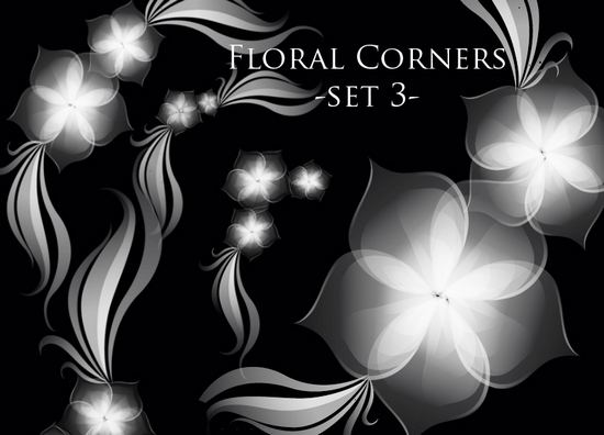 photoshop_floral_brushes_57.jpg