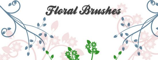 photoshop_floral_brushes_95.jpg