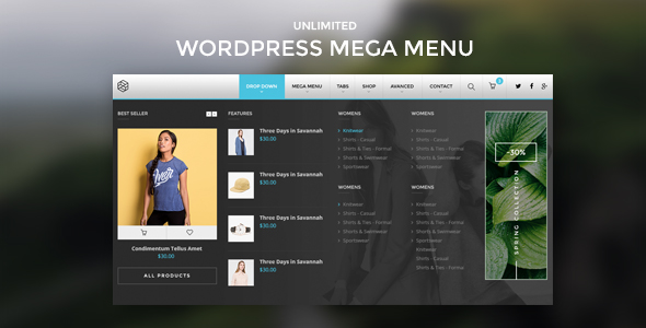 wordpress-mega-menu