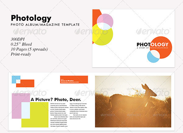 photology-album-magazine