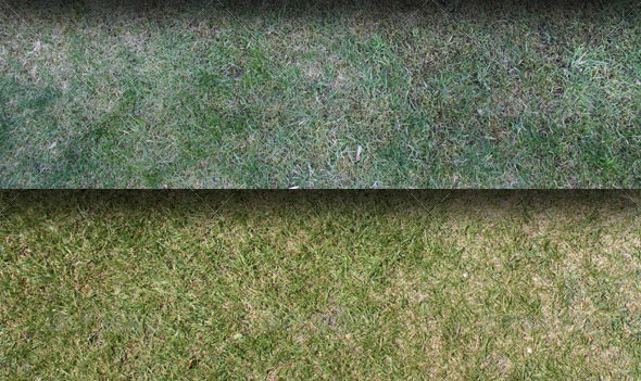 20-Grass-And-Straw-Textures