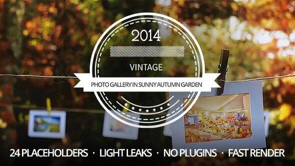 A Photo Gallery in Sunny Autumn Garden