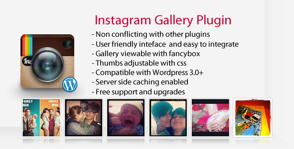 Instagram Gallery WordPress Plugi