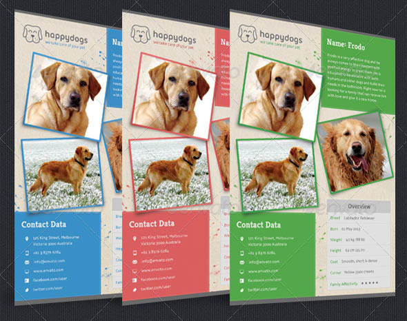 Pets Flyer Bundle