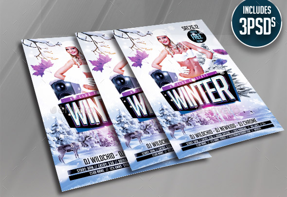 winter-flyer